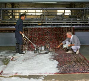 برترین قالیشویی کرج