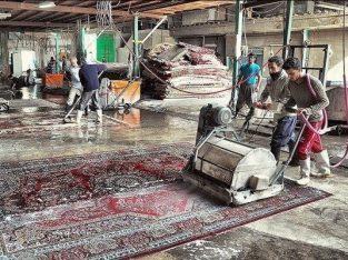 قالیشویی بیستون