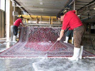قالیشویی نامین