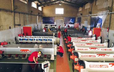 ماشین سازی قالیشویی