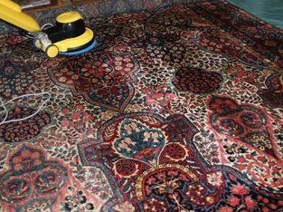 قالیشویی جهاد قادری فرد