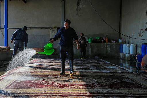 قالیشویی گلستان