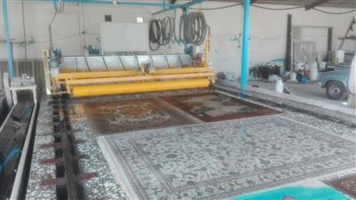 قالیشویی صدف